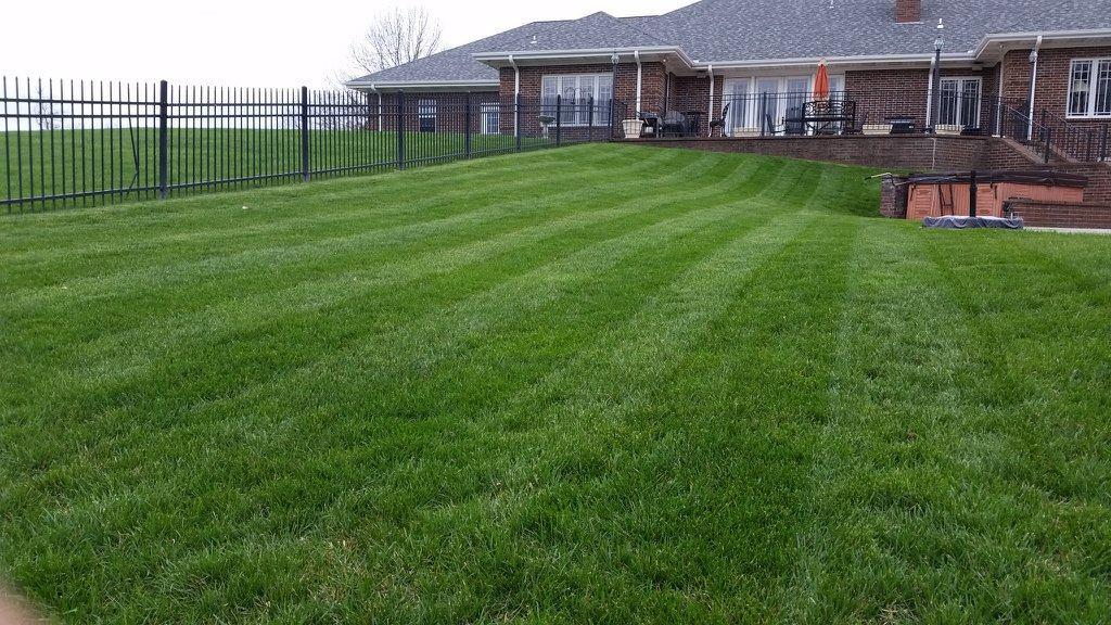 Lawn Care Cape Girardeau Mo Mondragon Lawn Service